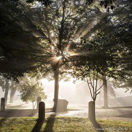 Jelgava. Rīts. Jelgavas pils parks.