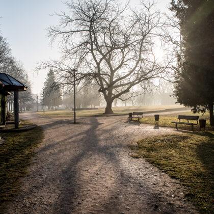 Raiņa parks, pavasaris. Jelgava.